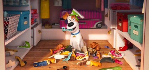 'The Secret Life of Pets' Courtesy of Illumination